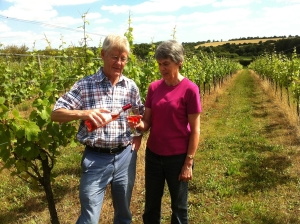 An attractive farm and successful vineyard is for sale